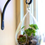 How To Make A Terrarium 7 Steps With Pictures Instructables