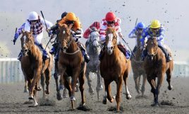 Horse-Racing-Winter-Der-001