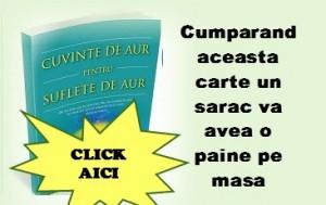1098374_200807310081924_591687205_n - Copie - Copie - Copie
