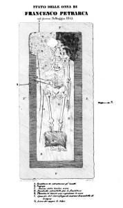 Il disegno che nel volumetto di Carlo Leoni (La vita di Petrarca, Padova, 1843) riproduce la condizione delle ossa di Petrarca all'apertura del sarcofago il 24 maggio 1843.
