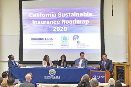 Sustainable Insurance Roadmap
