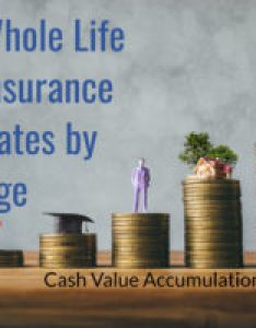 Best whole life insurance rates by age with charts also rh insuranceandestates