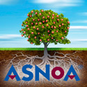 Sponsored by: ASNOA. Click here for more info.