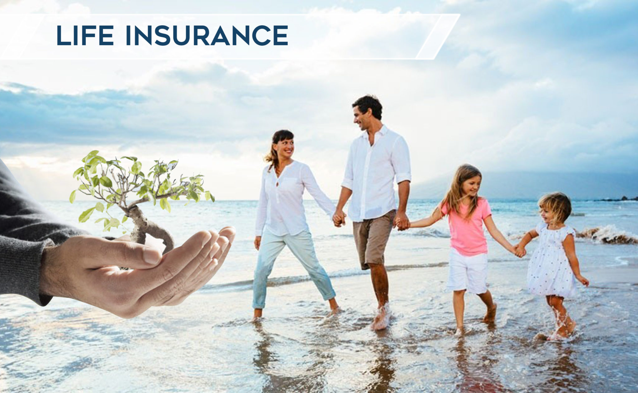 Select Quote Whole Life Insurance Florida Life Insurance Quotes  Diverse Insurance Group