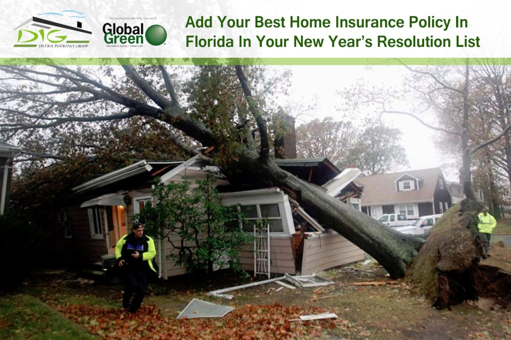 Best Home Insurance Policy In Florida