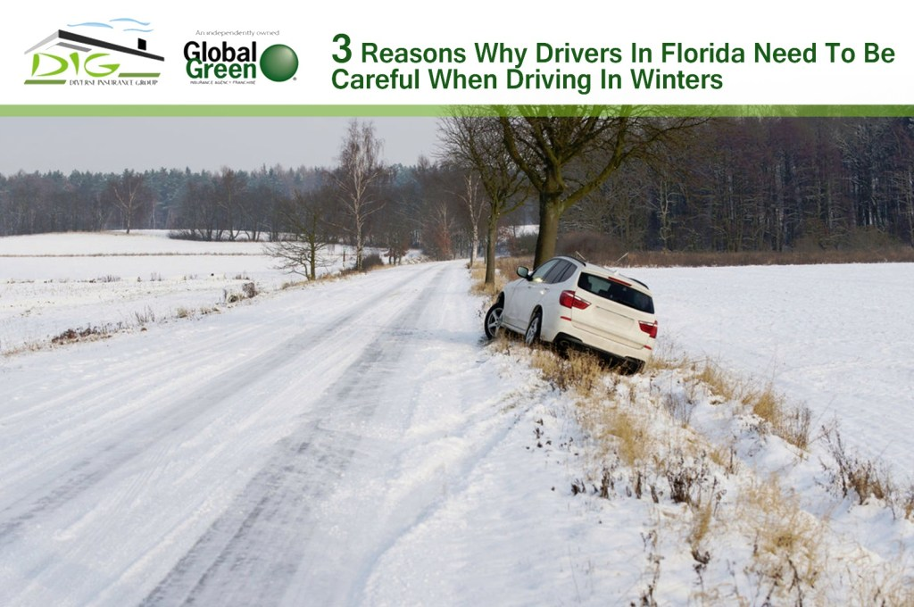 Drivers In Florida