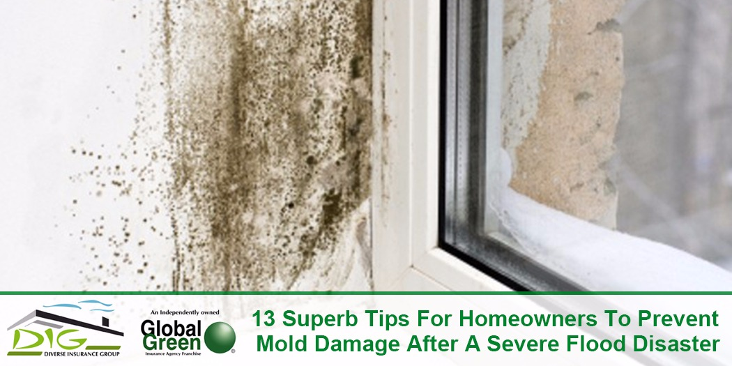 13 Superb Tips For Homeowners To Prevent Mold Damage After A Severe Flood Disaster