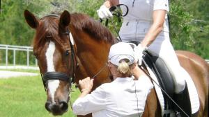 Liability Coverage from Equine Insurance Specialists