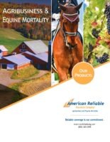 A BR 8003 0619-AG Products Booklet-small file[1]
