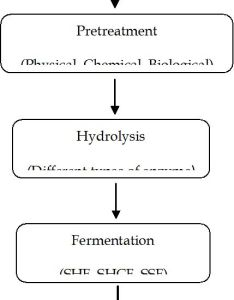 Figure the overall process flow diagram of bioethanol production also analysis configurations for from rh intechopen