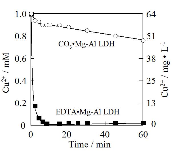 Hybrid Inorganic/Organic Composites of Layered Double