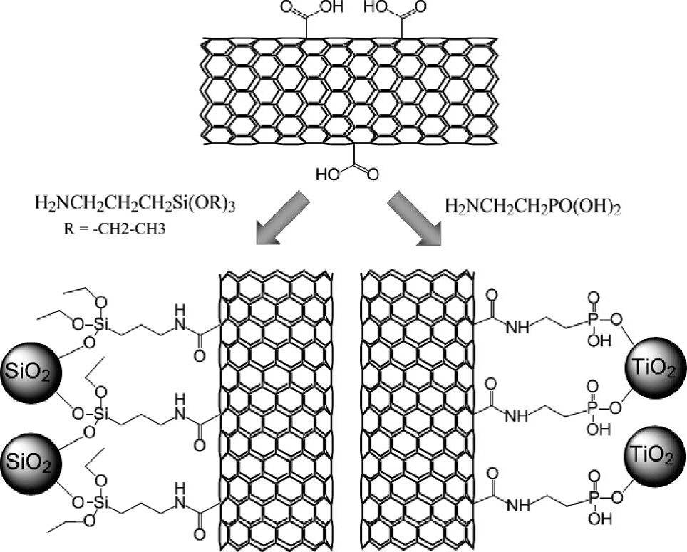 Chemically Modified Carbon Nanotubes: Derivatization and