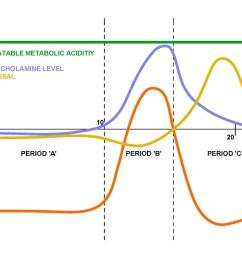 figure 2 schematic diagram of respiratory panic attack  [ 1126 x 796 Pixel ]