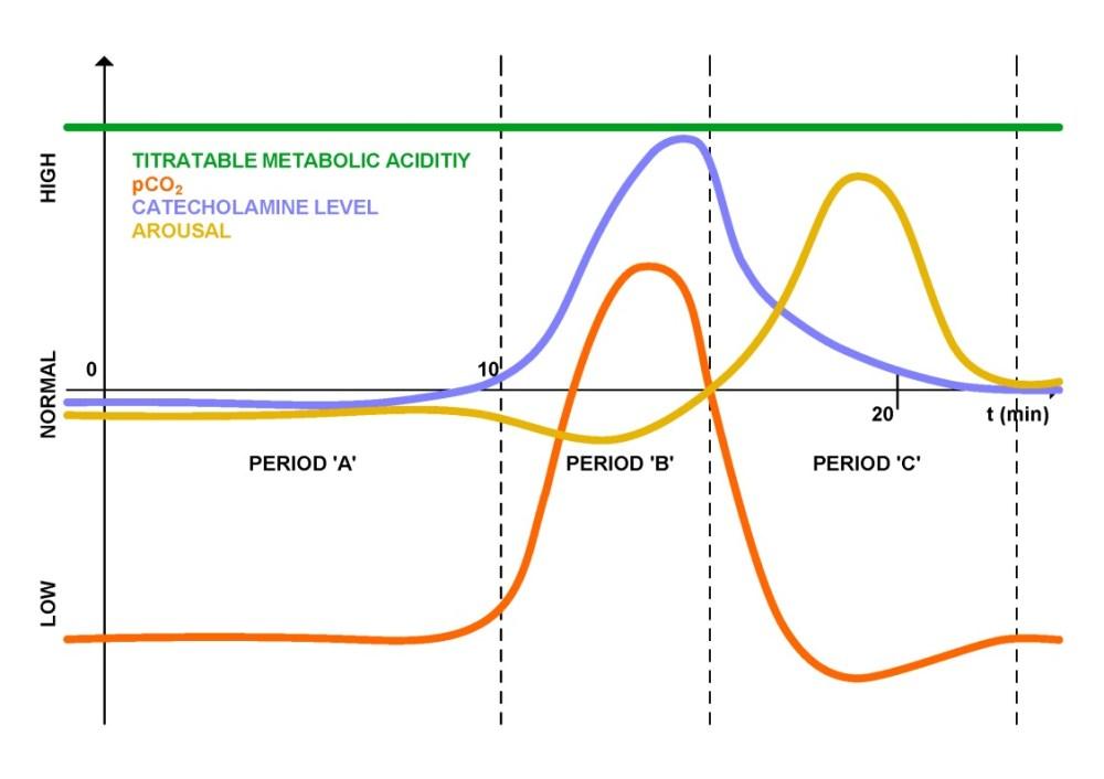 medium resolution of figure 2 schematic diagram of respiratory panic attack