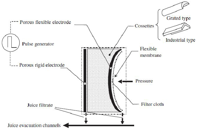 Pulsed Electric Fields for Food Processing Technology
