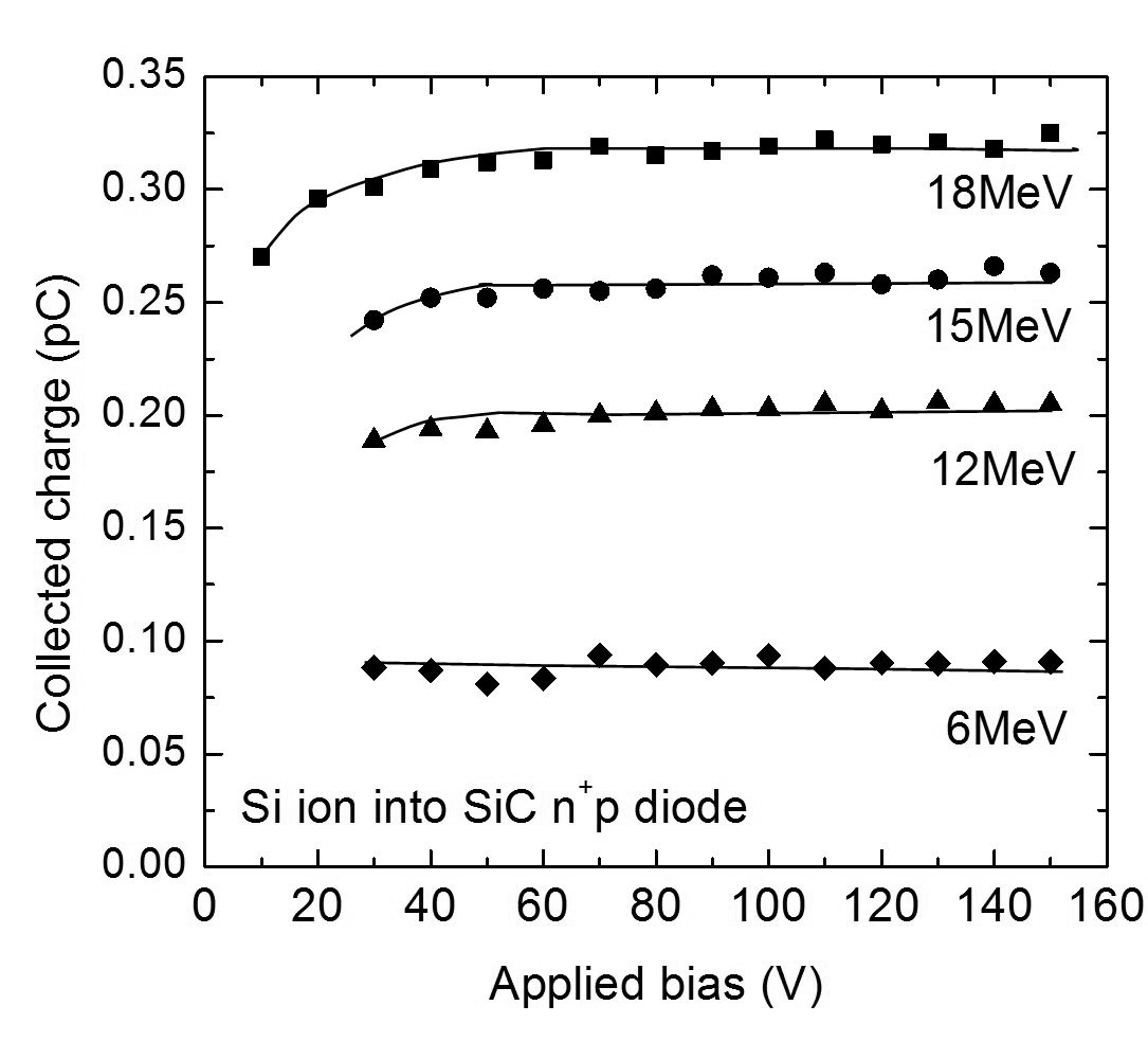 Radiation Response of Silicon Carbide Diodes and