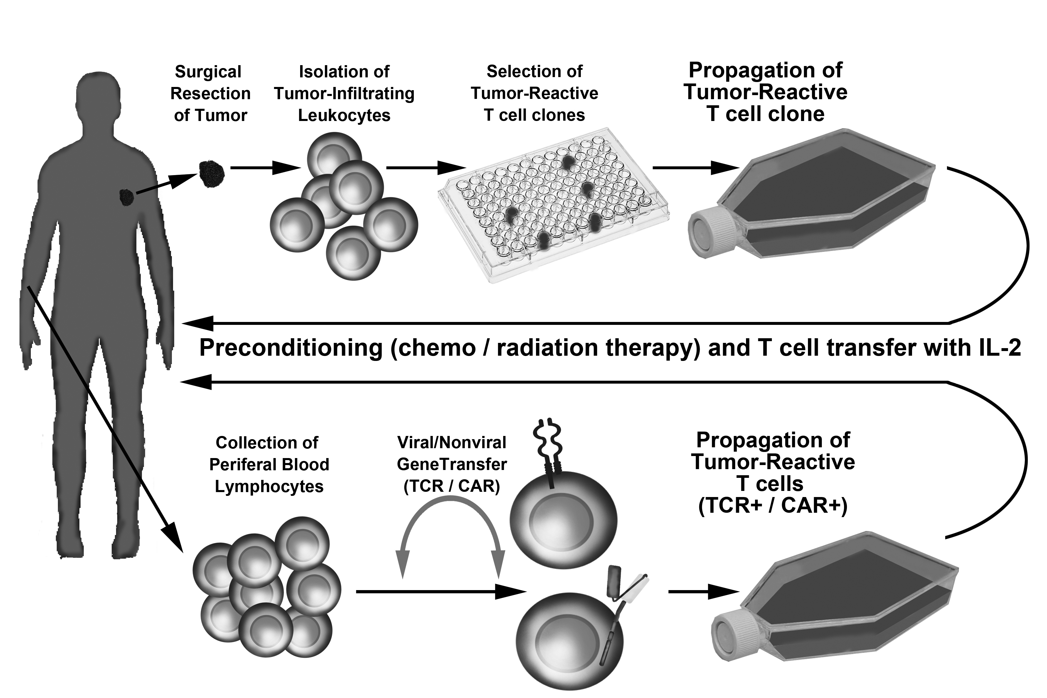 Recombinant Dna Technology In Emerging Modalities For