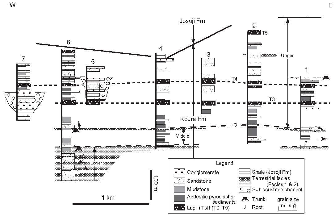 Early Continental Rift Basin Stratigraphy, Depositional