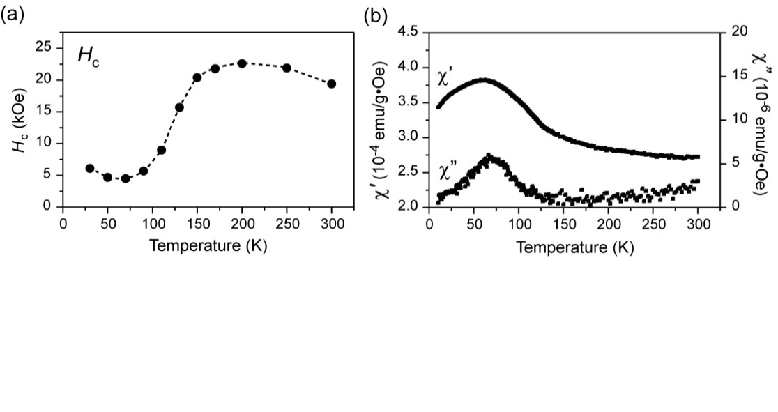 Unusual Temperature Dependence of Zero-Field Ferromagnetic