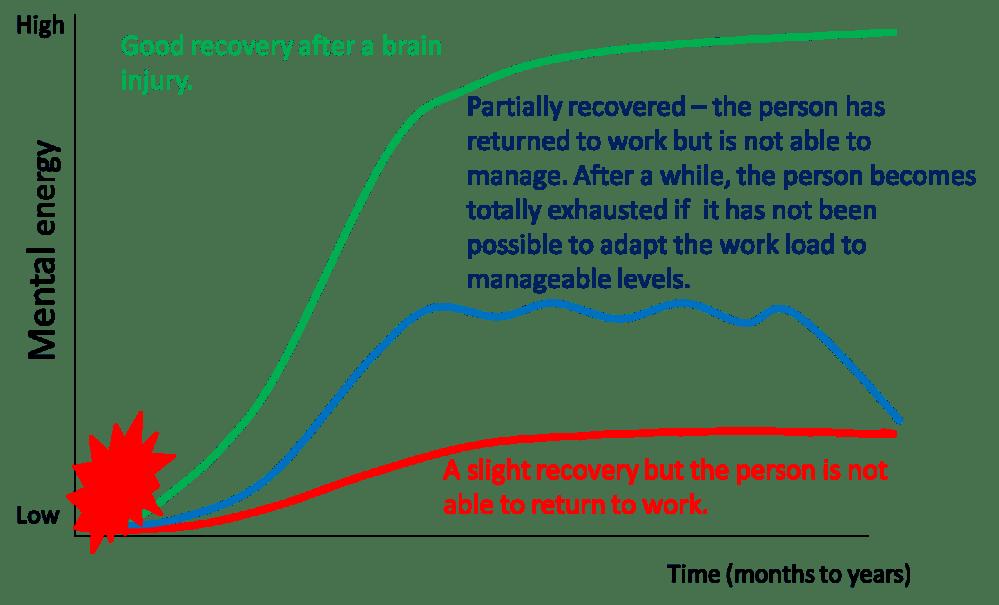 medium resolution of figure 1 schematic representation