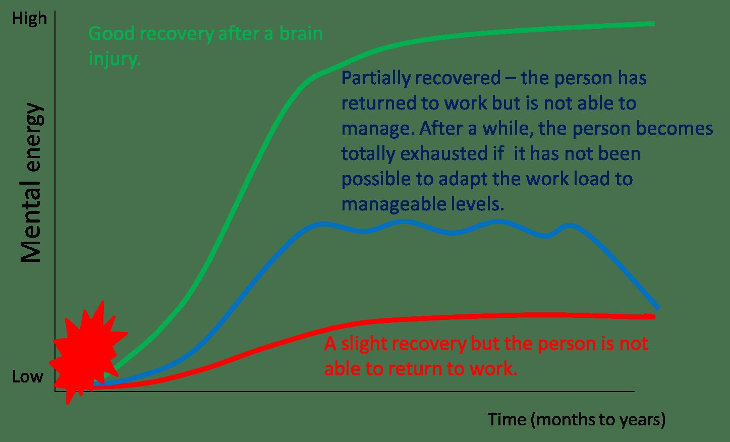 hight resolution of figure 1 schematic representation