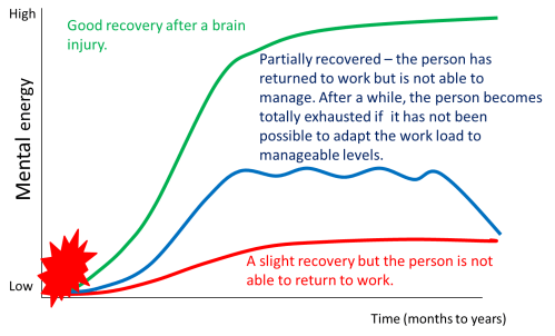 small resolution of figure 1 schematic representation