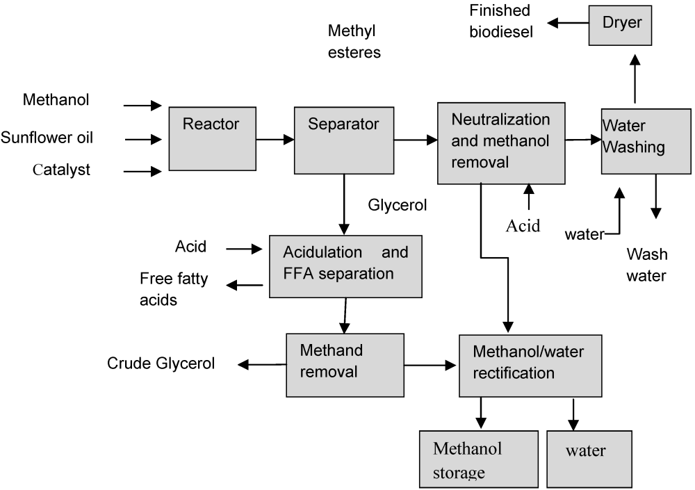medium resolution of figure 1 schematic process flow for biodiesel production