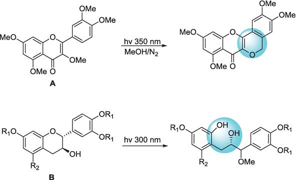 Flavonoid Accumulation Behavior in Response to the Abiotic