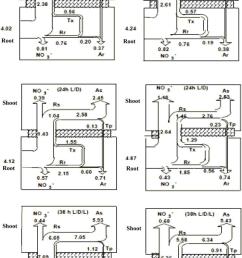 kium fuel pump wiring diagram [ 745 x 1146 Pixel ]