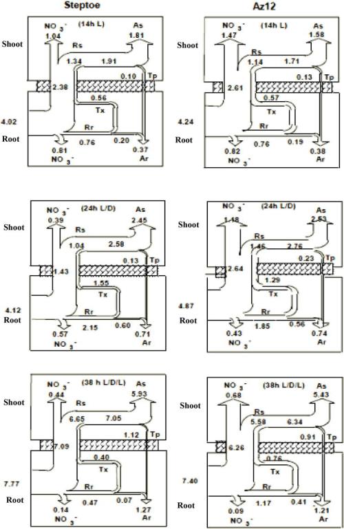 small resolution of kium fuel pump wiring diagram