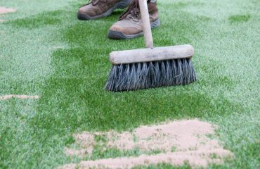 turf maintenance