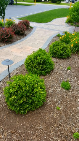 landscaper, Brookfield landscaping, landscaping company, patio builders