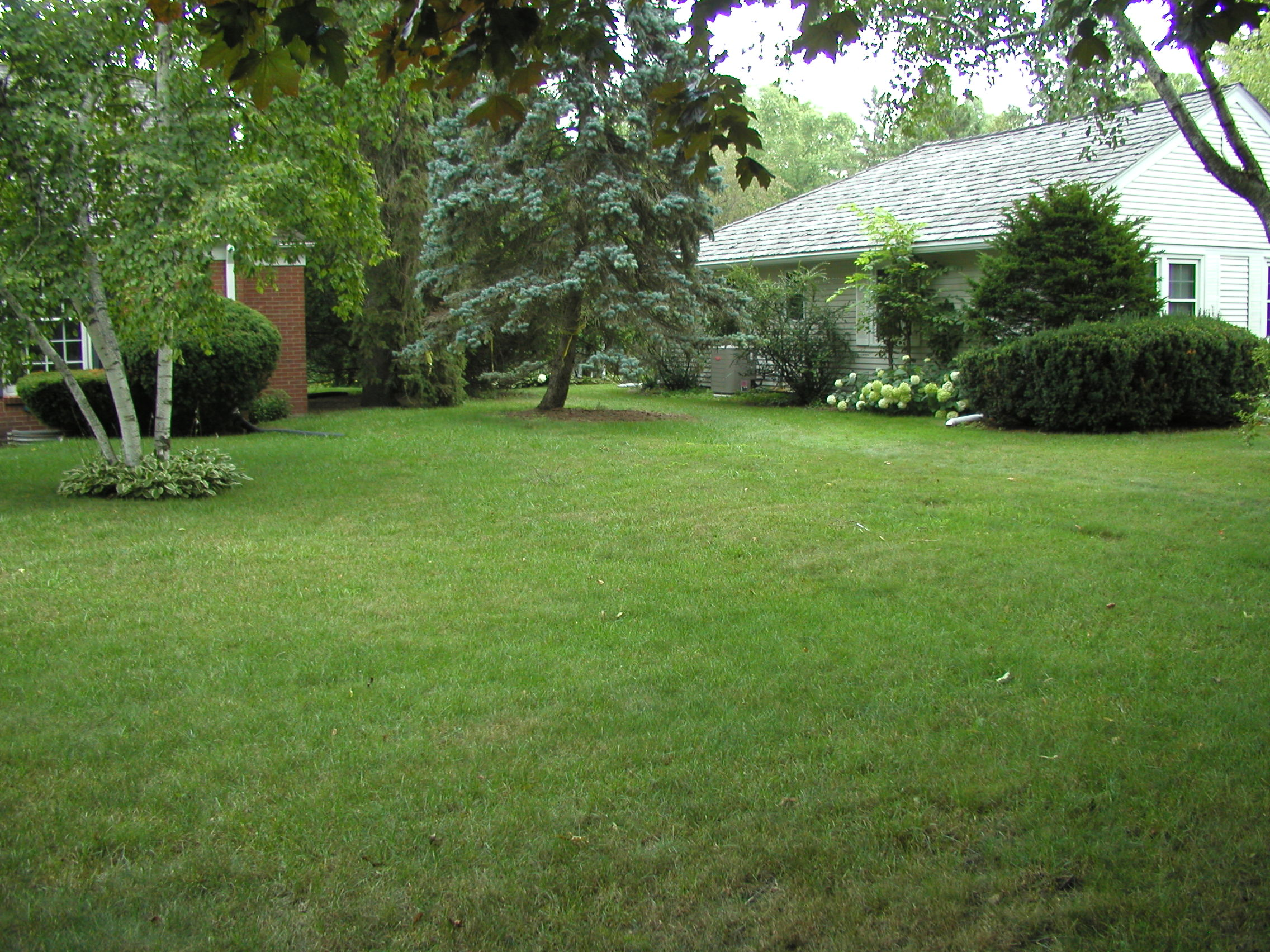 Drainage and Grading Project in Bayside WI | Integrity Landscape Services,  LLC
