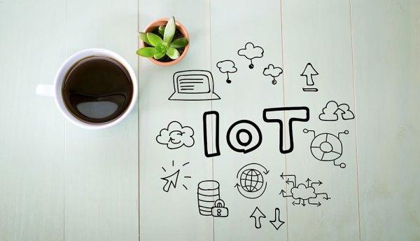 Orange Polska develops IoT and invites companies to cooperate