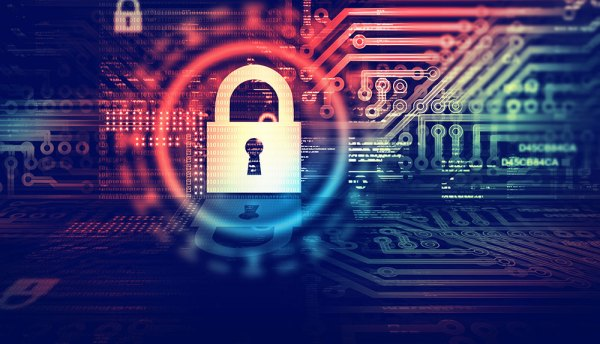 Experts advise on how to protect your business this Safer Internet Day