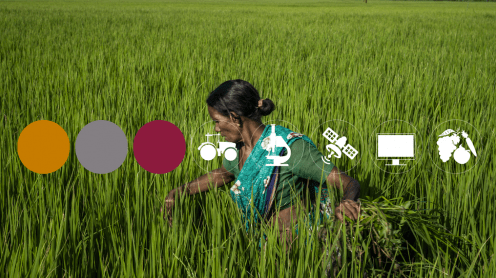 Open Data for Agriculture and Nutrition Godan