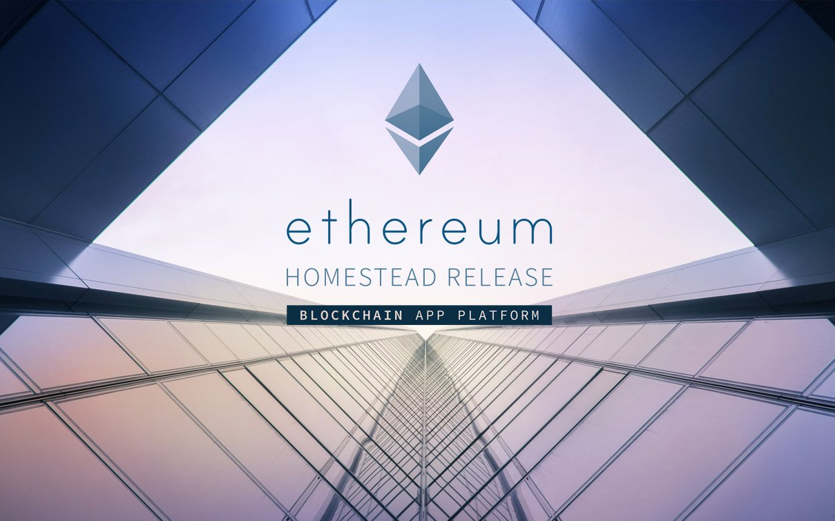 ethereum - The Best-value Cryptocurrencies According to Investors