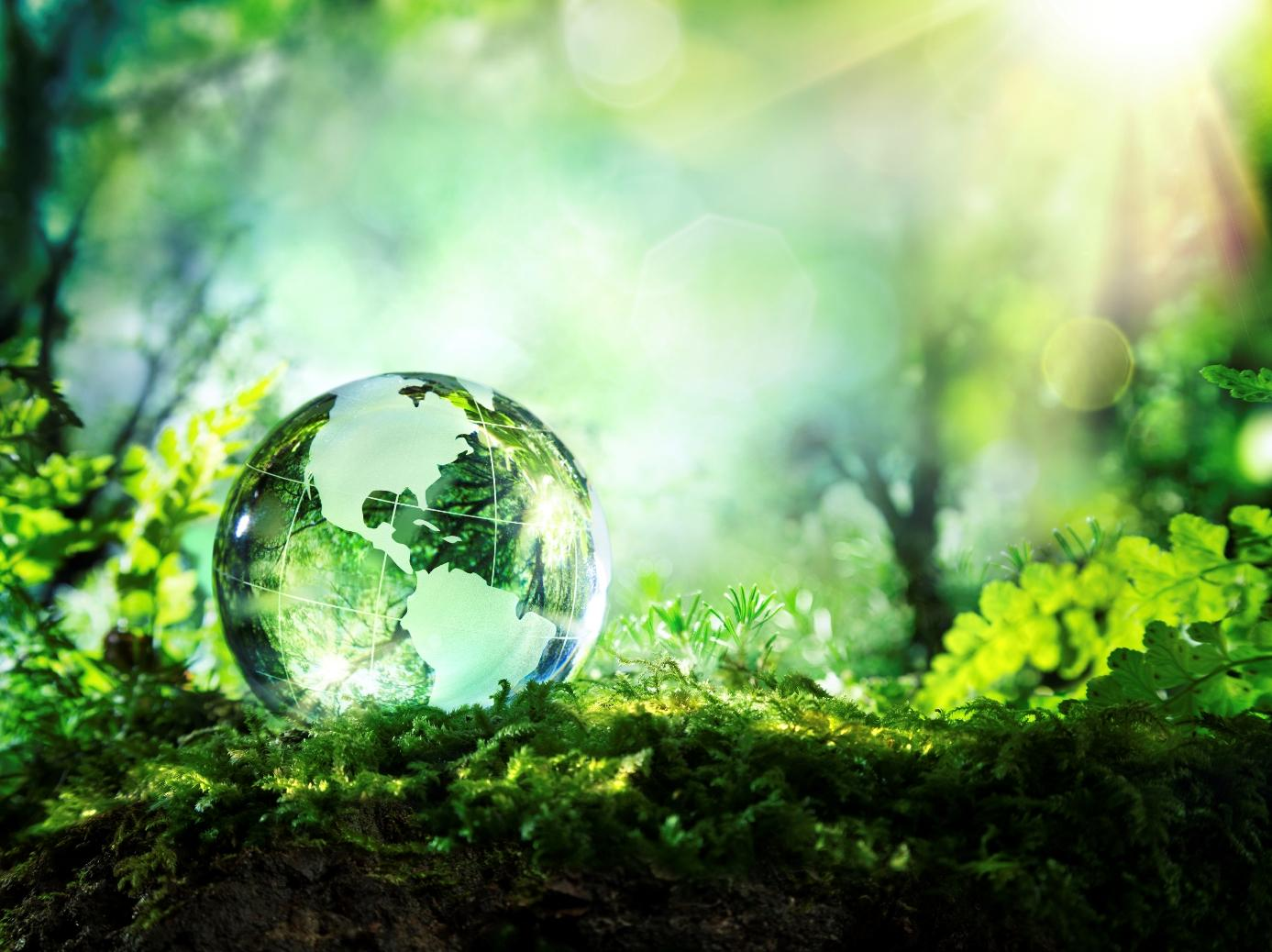 The Age of Change - How the Business World Has Become More Eco-Friendly in the 21st Century