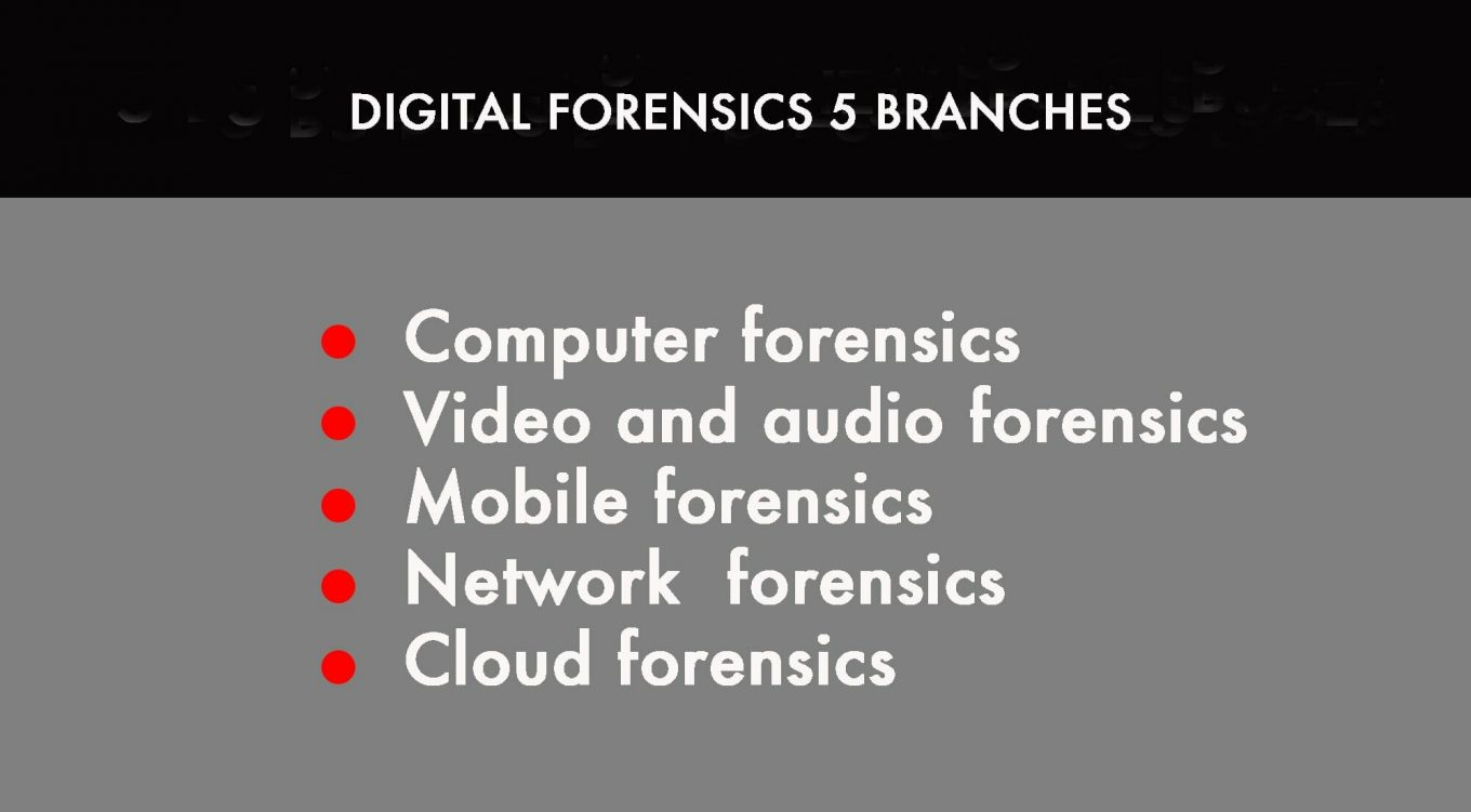 digital forensics 5 branches - Cybersecurity: Guide To Digital Forensics Part 2