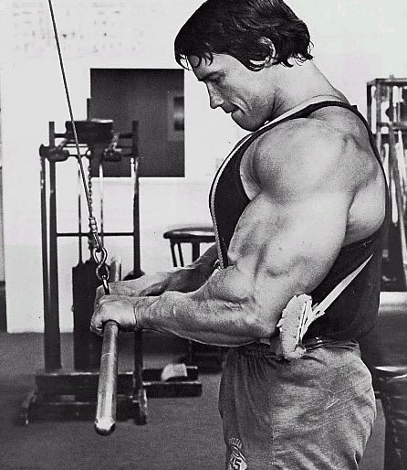 arm-blaster-triceps-growth
