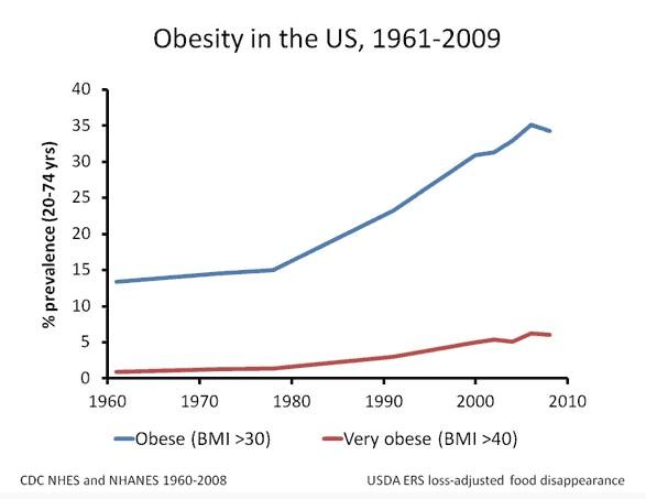 psmf-diet-obesity