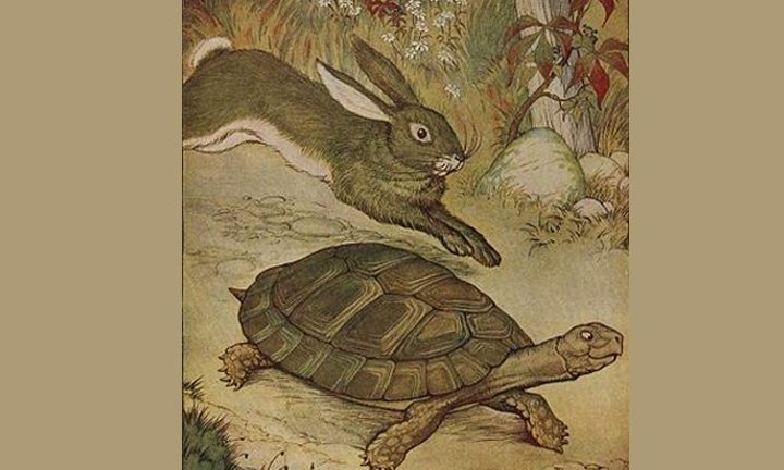 The Optimal Pace for Your Sales Team: Tortoise or Hare