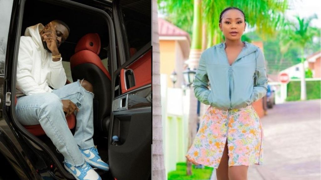 Pardon Akuapem Poloo for her son's sake – Sarkodie, Showboy, others appeal to court