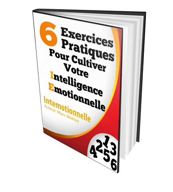 Cover Ebook 6 Exercices pratique Intelligence Emotionnelle Intemotionnelle 350