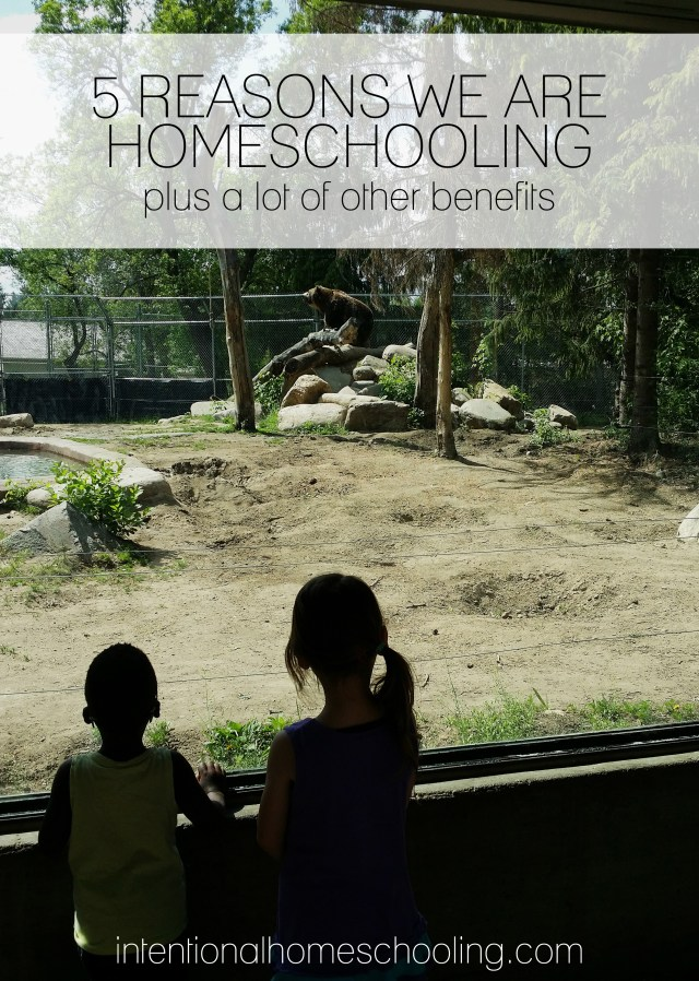 Everyone asks why we've made the choice to homeschool, there are so many reasons but I was able to pinpoint our top 5. And since I couldn't be limited to just that I also included tons of additional benefits.