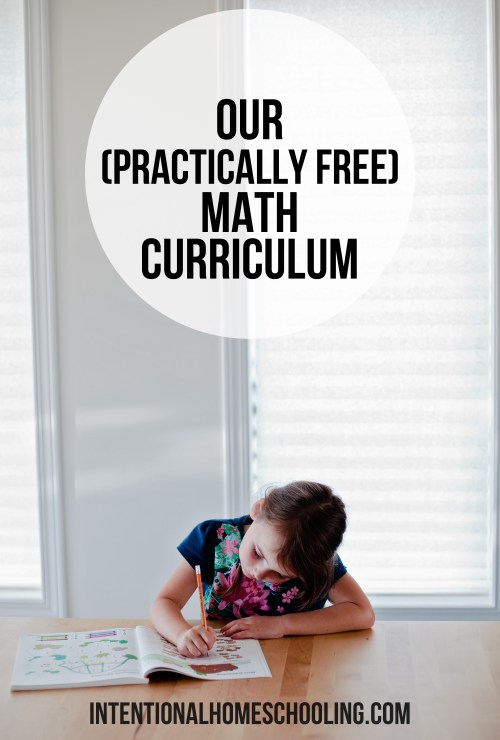 A break down on our practically free ($3) math curriculum for grade 1 math (but easy to adapt to all grades).
