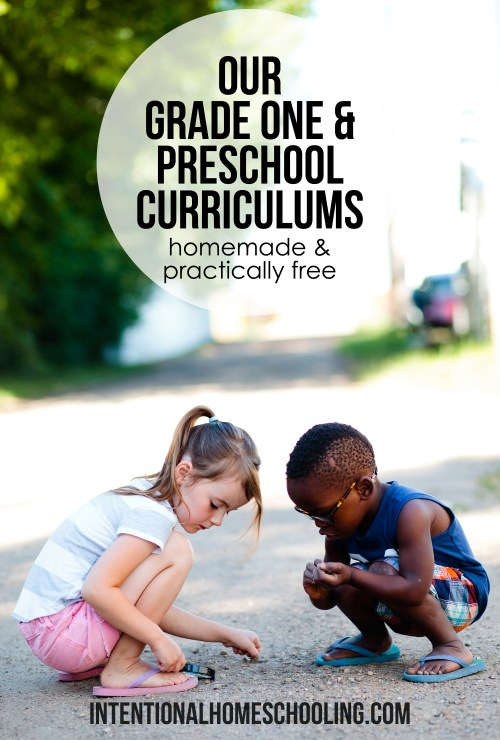 Our curriculum plans for homeschooling grade one and preschool.