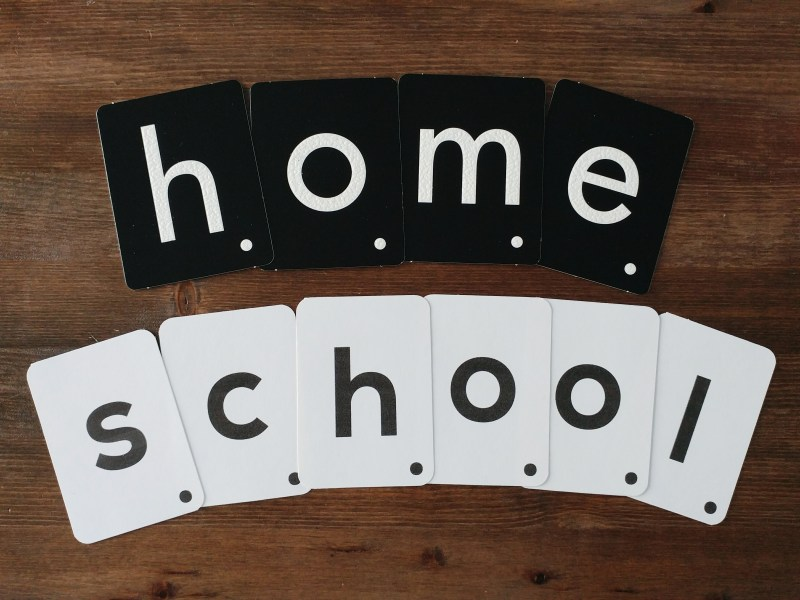 Our Daily Homeschool Resources - moveable letters