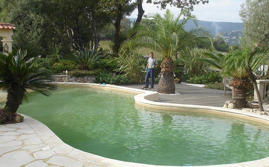 Jardin intgr autour de piscine