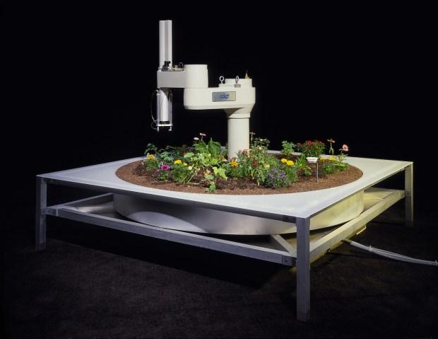 Ken Goldberg, The Telegarden, a remote garden installation
